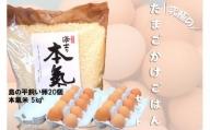 平飼い卵の卵かけご飯セット(平飼い卵20個・海士の本氣米5kg)