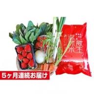 【5ヶ月連続お届け】蔵王源流米5kg&果物・野菜セット