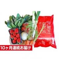 【10ヶ月連続お届け】蔵王源流米5kg&果物・野菜セット