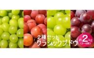 No.1001-1 クラシックぶどう【2種セット】約2kg入り(3~6房)