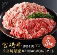 AB122 宮崎牛切落し肉1kg&豚小間切れ肉2kgバラエティセット(合計3kg)