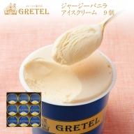 W-2269/アイスクリーム バニラ 9個 濃厚・なめらか