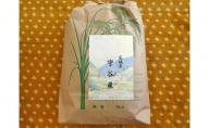 ☆生産農家直接仕入れ米 令和二年産 茨城コシヒカリ5kg【玄米発送】