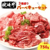 【枕崎牛】バーベキューセット 750g 鹿児島県産 牛肉 ロース カルビ 角切り CC-131