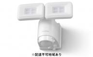 乾電池式LED防犯センサーライトLSL-B1TN-800