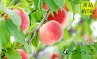 浅間水蜜桃 みつおかのもも なつっこ  秀品 約5kg