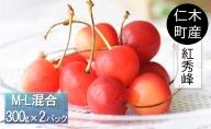仁木町のさくらんぼ「紅秀峰」600g≪妹尾観光農園≫