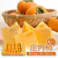 SA0052 庄内柿 約5kg(25~30玉入) L~4Lサイズ