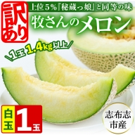 a0-170 【冬限定・数量限定】牧さんの訳ありメロン 白玉(青肉)1玉