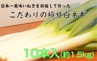 小田農園の極甘白ネギ1.5kg(冷蔵)