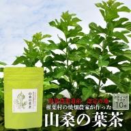 【世界農業遺産の産物】焼畑農家がつくった山桑の葉茶 スティックタイプ【桑茶】