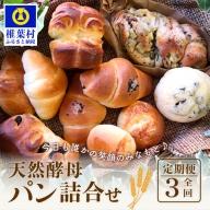 【3か月定期便】休日の朝に食べたい天然酵母パン詰合せ【日本三大秘境 椎葉村の人気ベーカリー】