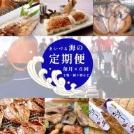 【ふるさと納税】【定期便】まいづる海の定期便 海産物 干物 かまぼこ へしこ