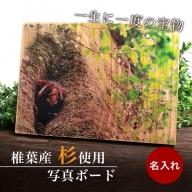 【椎葉産 杉使用】写真ボード(大) 一生に一度の宝物【オンリーワンの逸品】