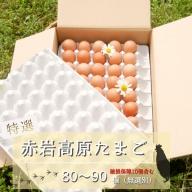 【ふるさと納税】赤岩高原たまご 80~90個入(特選/無選別M~L) 4.8kg以上