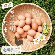 【ふるさと納税】【定期便】赤岩高原たまご 40個×3か月 120個(特選) 7.2kg以上