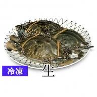 【亘理のワタリガニ】訳ありワタリガニ 3~5個(冷凍:生)