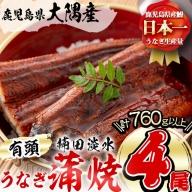 b5-133 楠田の極うなぎ 蒲焼き 190g以上×4尾(計760g以上)