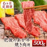 6ヶ月定期便 肥後のあか牛 焼き肉用 約500g×6ヶ月 牛肉 長洲501 熊本 特産 あか牛《お申込み月の翌月から出荷開始》