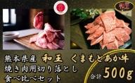 熊本県産 和牛 くまもと あか牛&和王 焼肉 用 切り落とし 食べ比べ セット 合計500g【配送不可:離島】