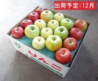 12月 訳あり 旬のりんご詰合せ約10kg(サンふじ確約3種以上)【大江町産・山形りんご・りんご専科 清野哲生】