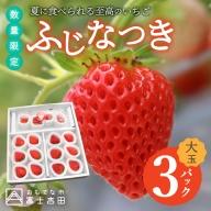 【数量限定!夏いちご】夏に食べられる至高のいちご ふじなつき(大玉セット)