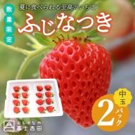 【数量限定!夏いちご】夏に食べられる至高のいちご ふじなつき(中玉セット)