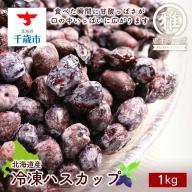 【北海道産】冷凍ハスカップ 1kg