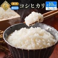 新米 無洗米 コシヒカリ 10kg 令和3年産【C276】