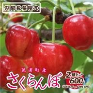 邑南のさくらんぼ2種セット600g(佐藤錦300g&紅秀峰300g)