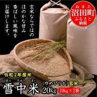 北海道 ゆめぴりか玄米20kg(10kg×2袋)令和2年産 雪中米