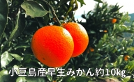 濃厚完熟小豆島産早生みかん約10キロ+ちょっぴりレモンを添えて 配送不可地域(北海道・沖縄県)