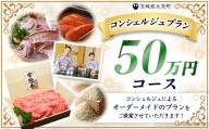 ZZ001_【提案型】あなただけのコンシェルジュプラン(50万円コース)