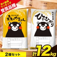 ひのひかり6kg/森のくまさん6kg 計12kg 食べ比べ厳選お楽しみセット 令和2年産 熊本県産 白米 6kg×2袋 《3-7営業日以内に出荷(土日祝除く)》 精米 玉東町 森くま