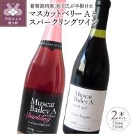 【山梨県産】プロの葡萄栽培家である池川氏が手掛けたマスカットベリーA(750ml)とスパークリングワイン(720ml)2本セット