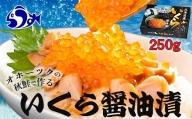 北海道産いくら醤油漬250g F21M-042