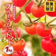 先行予約!数量限定!!うす皮フルーツミニトマト「華の妖精」1kg
