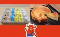 4種のモナカとベイクドチーズケーキのセット
