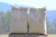 佐久市望月のコシヒカリ 白米6kg(春日産3kg・茂田井産3kg)美味しいお米 お取り寄せ