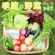 【ふるさと納税】季節の野菜と卵セット 旬野菜10~15種類と平飼い卵の詰め合わせ