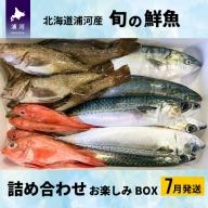 ◆7月発送◆漁協厳選!鮮魚お楽しみBOX[B02-607]