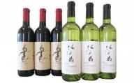 [5839-0096]【山梨県産】楽園ワイン赤・信天翁(あほうどり)白ワイン 6本セット