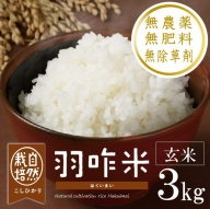 [A017] 【無農薬】【玄米】能登のこだわり自然栽培こしひかり『羽咋米』 3kg(3kg×1袋)