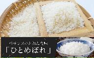 TB8-13 特別栽培米 ひとめぼれ 20kg