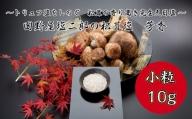 【四国一小さなまち】 ≪数量限定≫   田野屋塩二郎の松茸塩  芳香 10g(小粒)