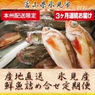 天然のいけす 富山湾 氷見漁港 旬の鮮魚セット定期便3ヶ月連続※配送地域限定
