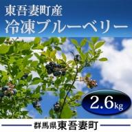 東吾妻町産 冷凍ブルーベリー2.6kg