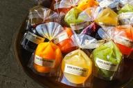 【夏季限定】GOODなフルーツゼリー 10個(5種×各2個)セット H127-003