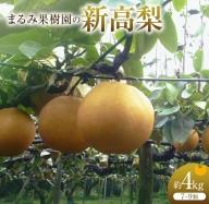 AA44 《期間・数量限定》梨の王様!!まるみ果樹園の『新高梨』約4kg《都農町産》