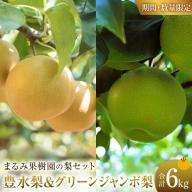 AE42 《期間・数量限定》豊水梨&グリーンジャンボ梨セット(約6kg)